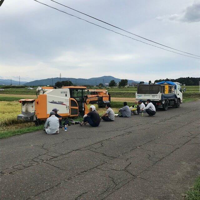 稲刈り合間の休憩