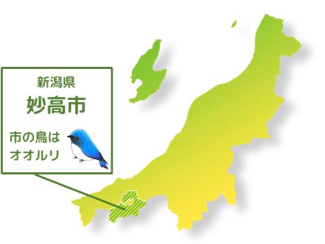 妙高市位置図